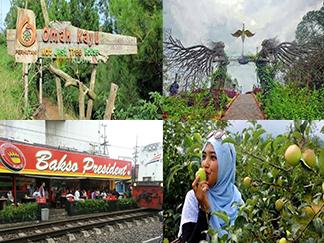 Pakej Percutian Surabaya Bromo Malang
